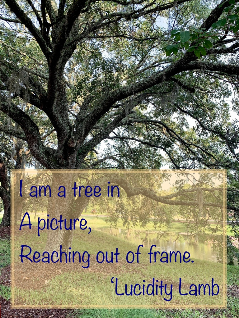 """A picture of a tree. The text says """"I am a tree in a picture, reaching out of frame."""""""